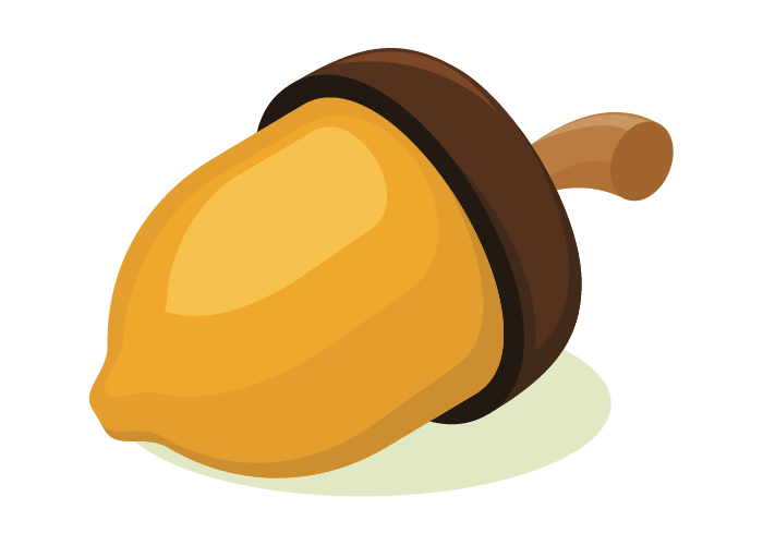 ACORNS: An Easy-To-Use Code Generator for Gradients and Hessians