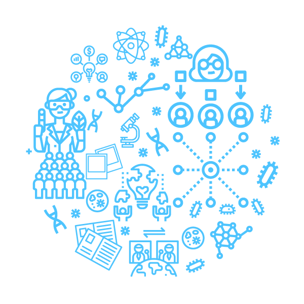 Peer Network Graphic Link